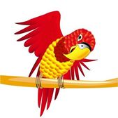 Red parrot on the branch — Stock Vector