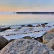 Stock Photo: Floe on lake near shore