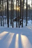 Casa de madera en invierno — Foto de Stock