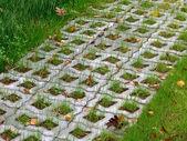Trávy a dlažební desky — Stockfoto