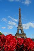 Paris, France, Eiffel Tower — Stock Photo