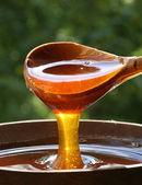 蜂蜜スプーン — ストック写真