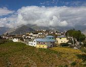 India, the mountains, the Himalayas, the village, — Stok fotoğraf