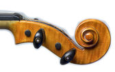 Musical instrument violin — Stock Photo