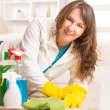 Beautiful young woman cleaning her house — Stock Photo #40300341