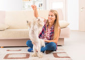 Beautiful young woman training her dog — Stock Photo