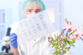 Analizing DNA GMO — Stockfoto