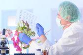 Analizing DNA — Stock Photo