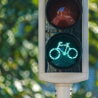 Bicycle traffic light — Stock Photo
