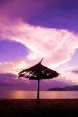 日傘トーチ. — ストック写真