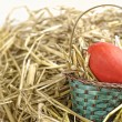 Stock Photo: Easter basket with egg