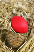 Easter basket with egg — Stock Photo