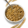 Stock Photo: Cooked wheat