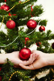Decorating the Christmas tree — Foto Stock