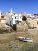 Houses on the sea shore with a boat — Stok fotoğraf