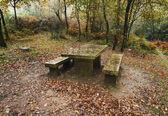 Sten benche och tabell i regn dagen — Stockfoto