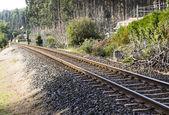 Demiryolu çapraz kompozisyon — Stok fotoğraf