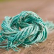 Deteriorated piece of string — Stockfoto