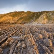 Stock Photo: Flysch in LVegbeach, Asturias, Spain.