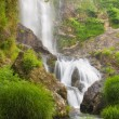 Stock Photo: Beauty waterfall in nature