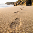 Footprints in the sand of the beach. — Stock Photo