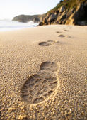 Footprints detail in the sand of the beach — Stock Photo