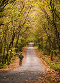 Man walking along a road in the forest — Stock Photo