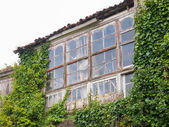 Abandoned house invaded by nature — Stock Photo
