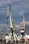 Cranes in a port — Stock Photo