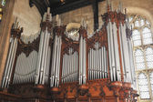 Wide angle pipe organs — Stok fotoğraf