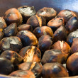 Roasted chestnuts — Stock fotografie