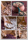 Legumes - Collage — Stock Photo