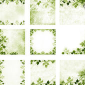 Green floral vintage leaves and flowers backgrounds — 图库照片