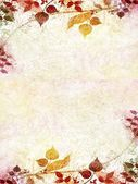 Vintage floral with old paper background — 图库照片