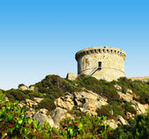 Typical genoese tower of Corsica — Stock Photo