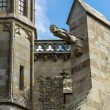 Gargoyle on the cathedral Saint-Nazaire - Stock Photo