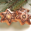 christmas gingerbread — Stock Photo #14879601