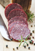 Sliced meat salami sausage — Foto de Stock