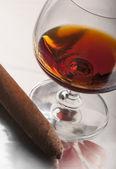Cognac y puros — Foto de Stock