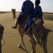 Camel drivers — Stock Photo
