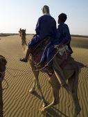 Camel drivers — Stock Photo