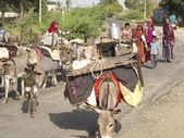 Nomadic women on the road. — Stock Photo