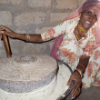 Bishnoi woman turning a millstone. - Stock Photo