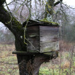 Stock Photo: Old hive