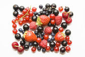 Set of wild berryes — Stock Photo