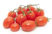 Tomatos — Stock Photo