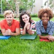 Group of happy college students in grass — Stock Photo