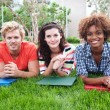 Group of happy college students in grass — Stock Photo #13486126