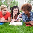 Group of happy college students in grass — Stock Photo #13486130