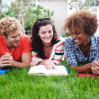 Group of happy college students in grass — Stock Photo #13486132